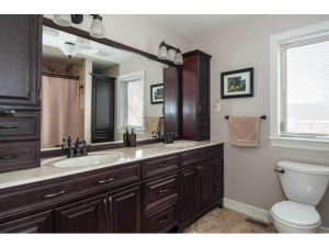 746 Cooper St-MLS_Size-017-14-Main Bathroom-533x415-72dpi