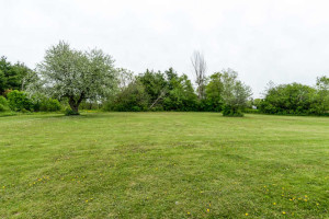 3671 Diamondview Rd-small-036-7-Back Yard-666x444-72dpi