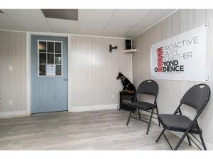 515 Scheel Dr-MLS_Size-018-16-Kennel Reception-1024x768-72dpi - Copy