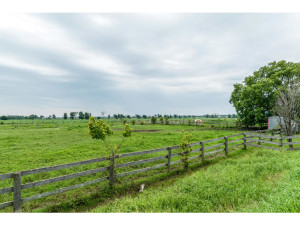 515 Scheel Dr-MLS_Size-035-9-Fenced Field-1024x768-72dpi